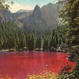 lago di tovel rosso Gino De Concini