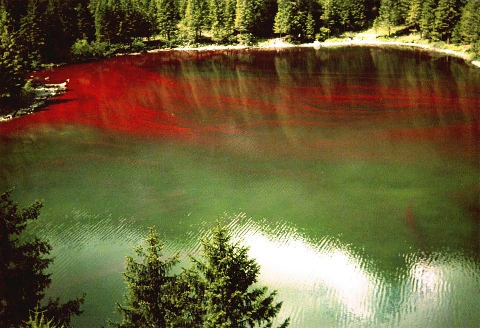 lago ti Tovel rosso - credit ph Gino de Concini