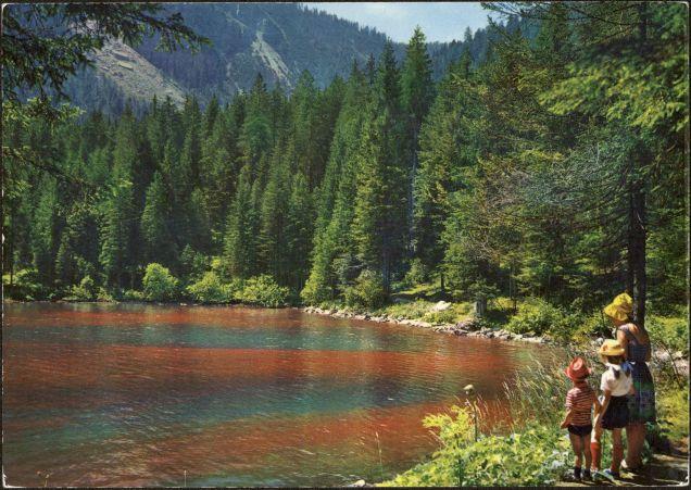 lago-rosso-lago-di-tovel-cartolina-1973