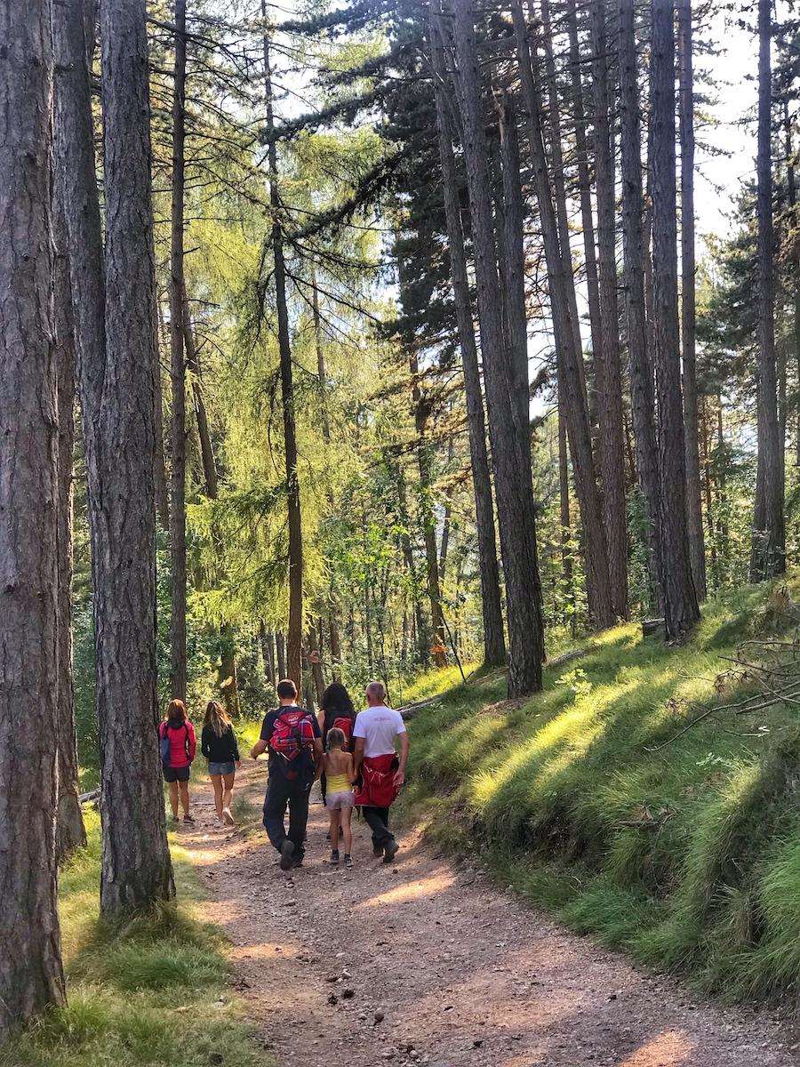 sentiero delle fate-preghena-bosco