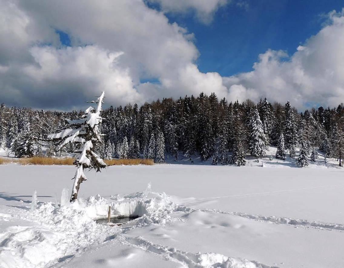 lago-di-tret-inverno-elisa-battocletti