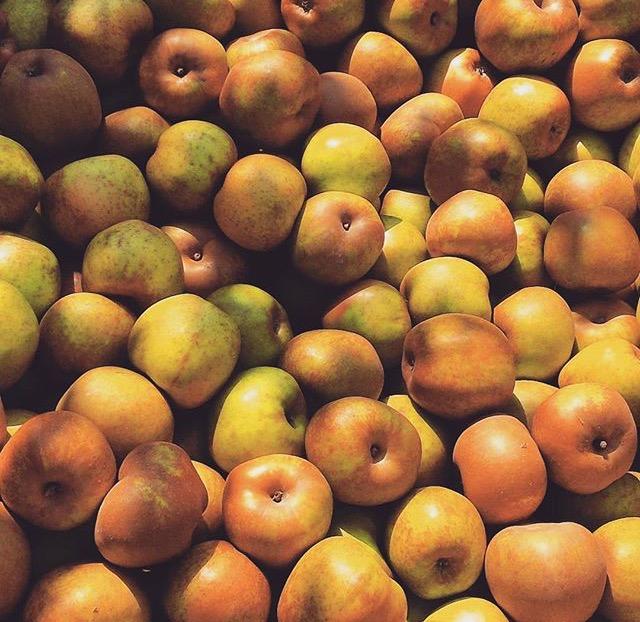 una mela al giorno-trentino