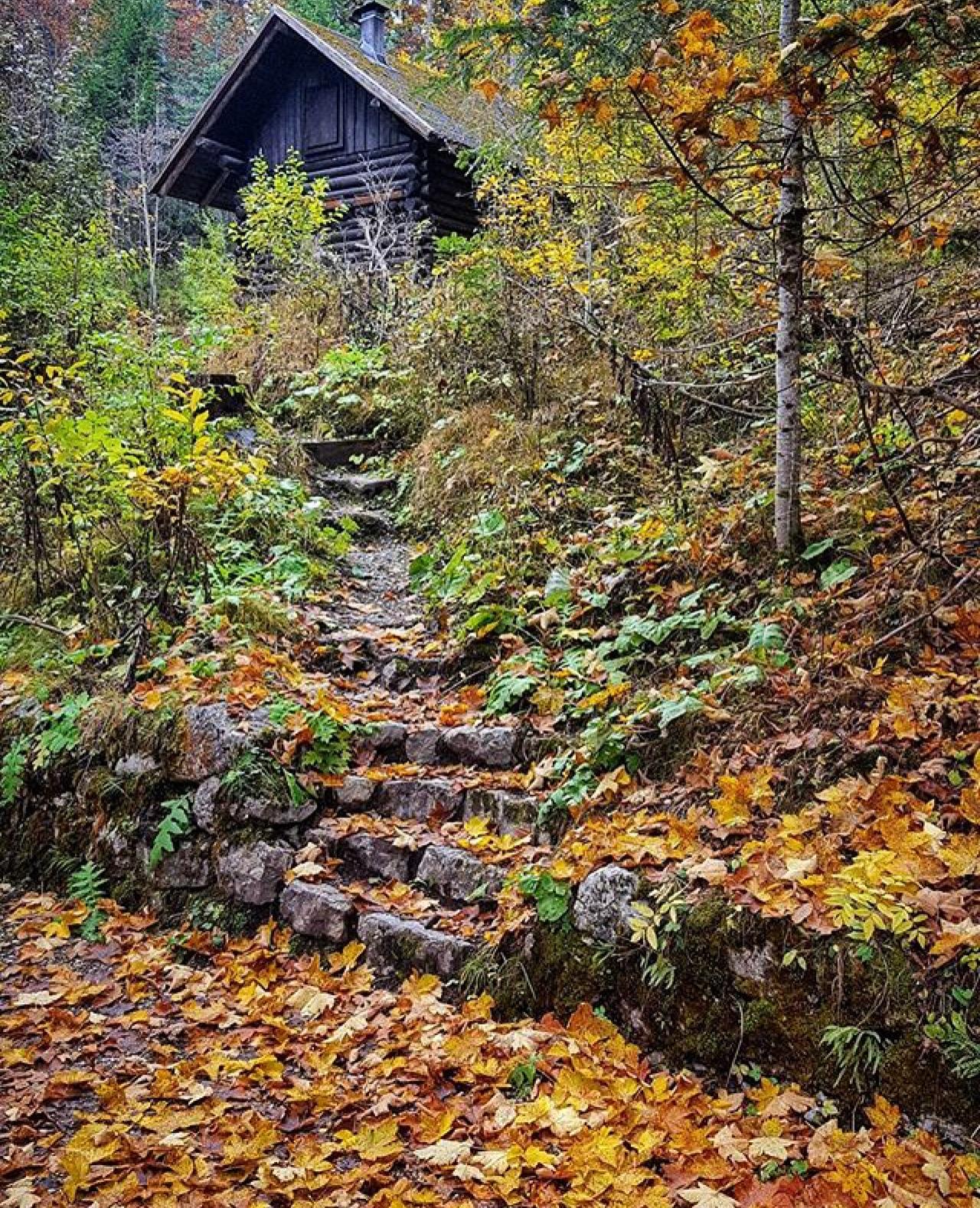 Escursioni in autunno - tovel