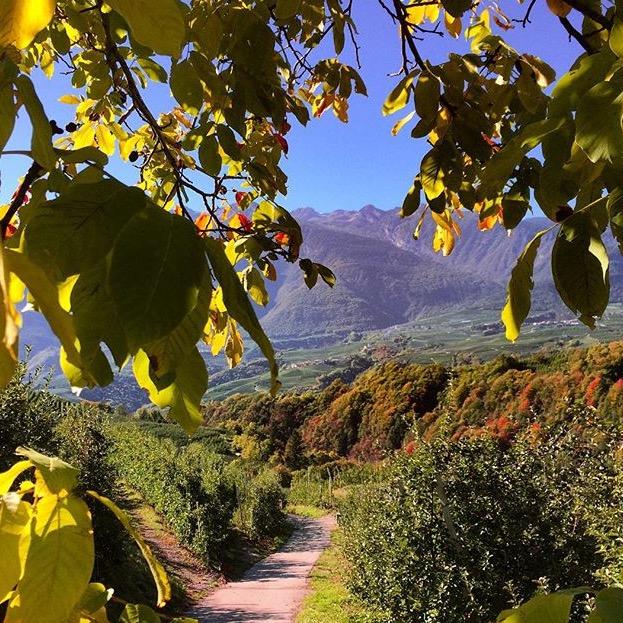 escursioni in autunno-valdinon