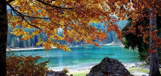 foliage lago di tovel