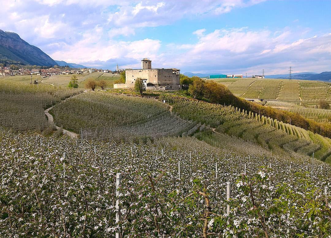 Castel Belasi, Cosa fare a maggio in Val di Non ph by Roberto de Oliva - i Love Val di Non.it