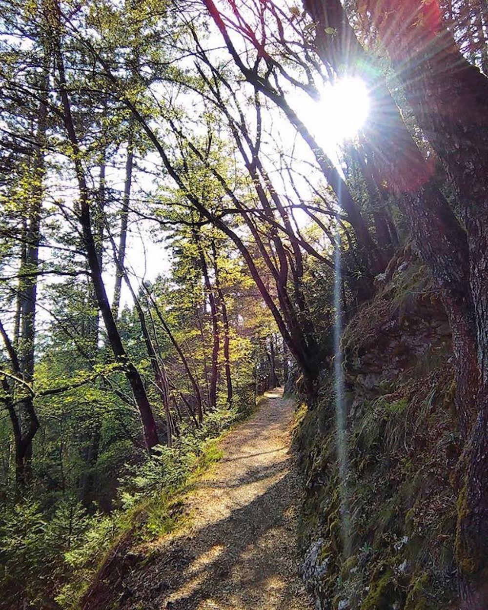 passeggiate alta val di non-sentiero dria al fos-cavareno-mihaela iordache