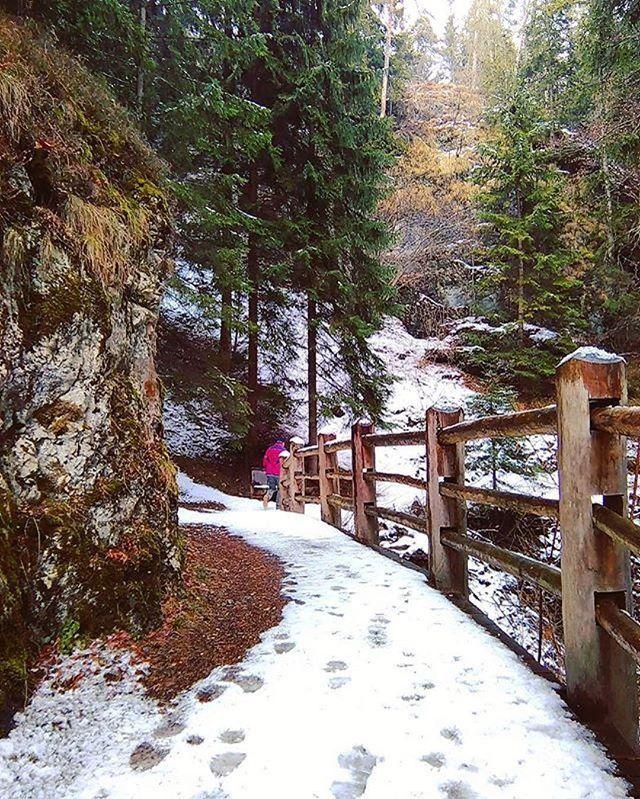 sentiero dria al fos-cavareno-mihaela iordache