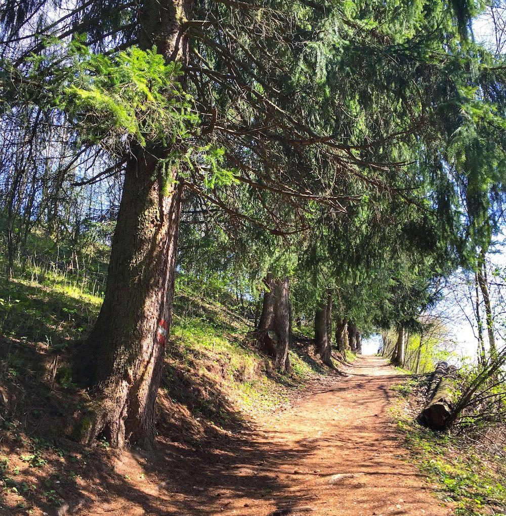 sentiero per la base della cascata