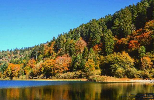 foliage Trentino Alto Adige-laghi di lamar