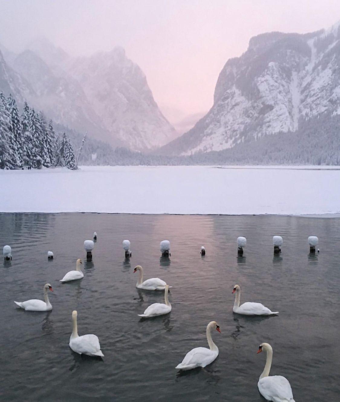 trentino alto adige in inverno - Lago di dobbiaco