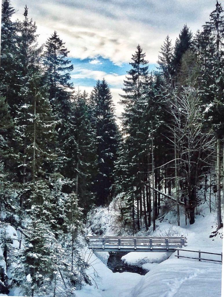 camminare sulle neve-inverno