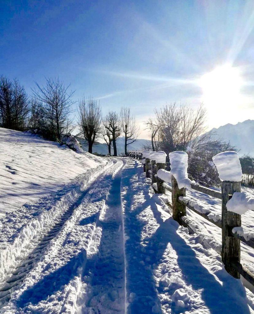 passeggiate in inverno sfruz val di non