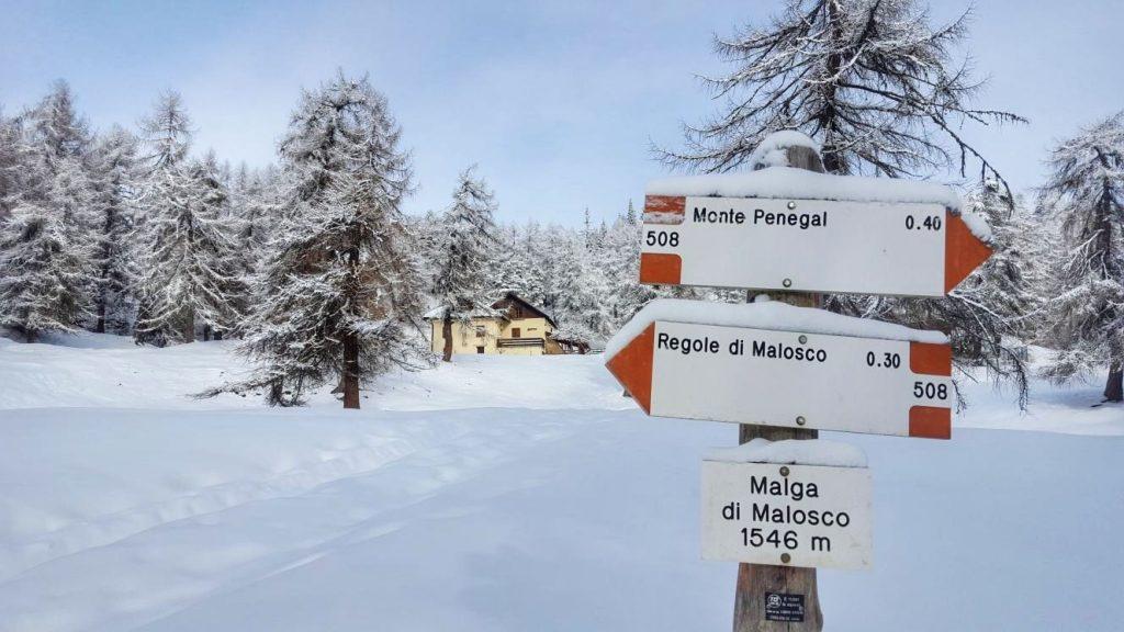 regole di malosco-monte penegal-inverno