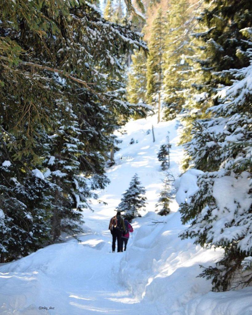 camminate nella neve val di non