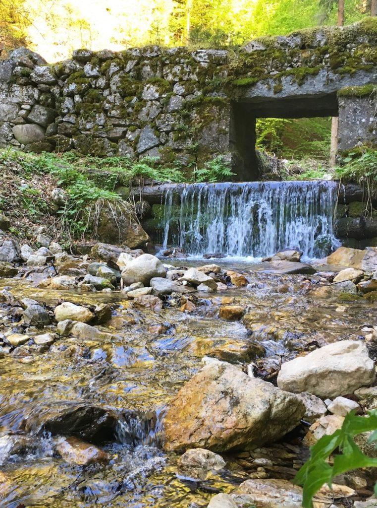 torrente vallavena-primavera in val di non-acqua che scorre