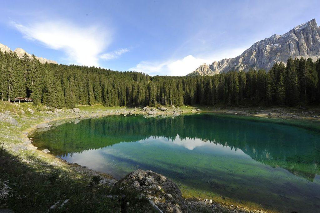 Lago di Martignano (Anguillara Sabazia): AGGIORNATO 2020 ...