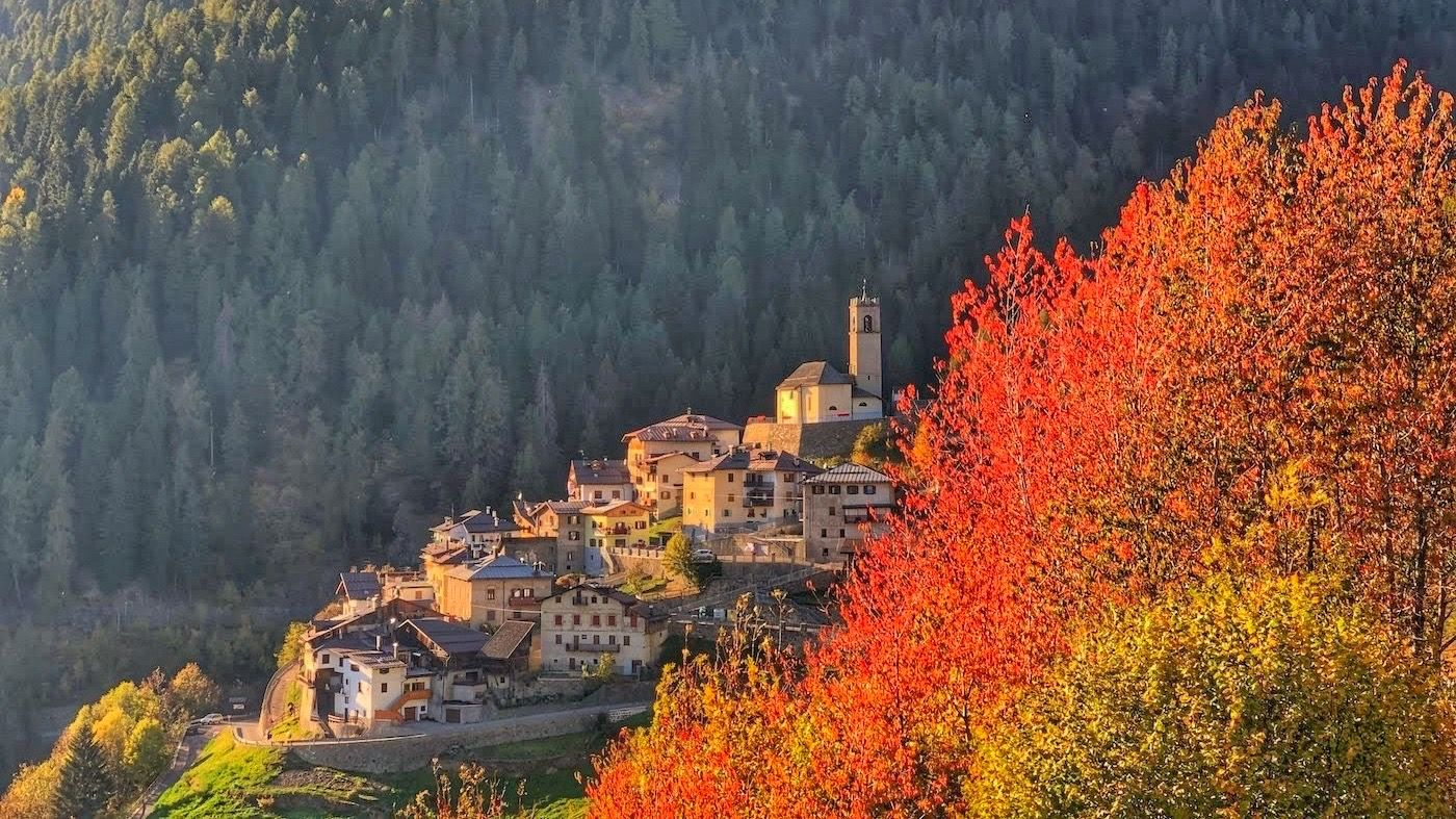 foliage in val di sole