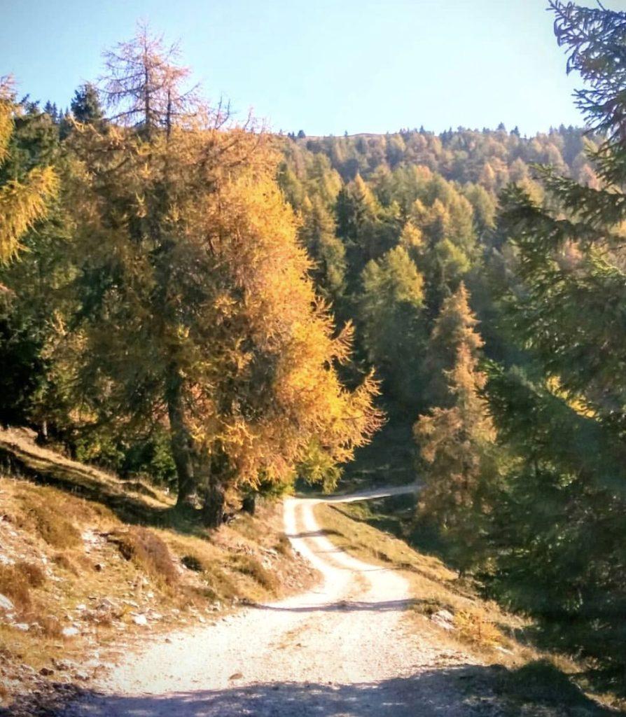 escursioni in val di non autunno-andrea piffer