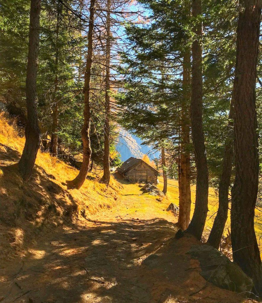 passeggiata a covel-pejo-autunno in val di sole
