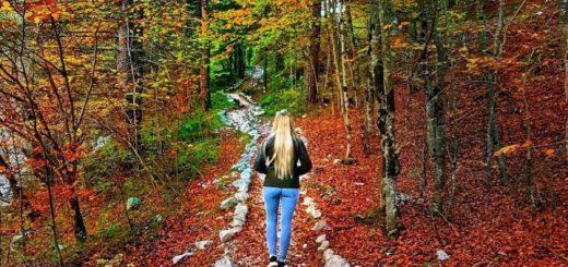 passeggiate d autunno in val di non-sentiero delle glare