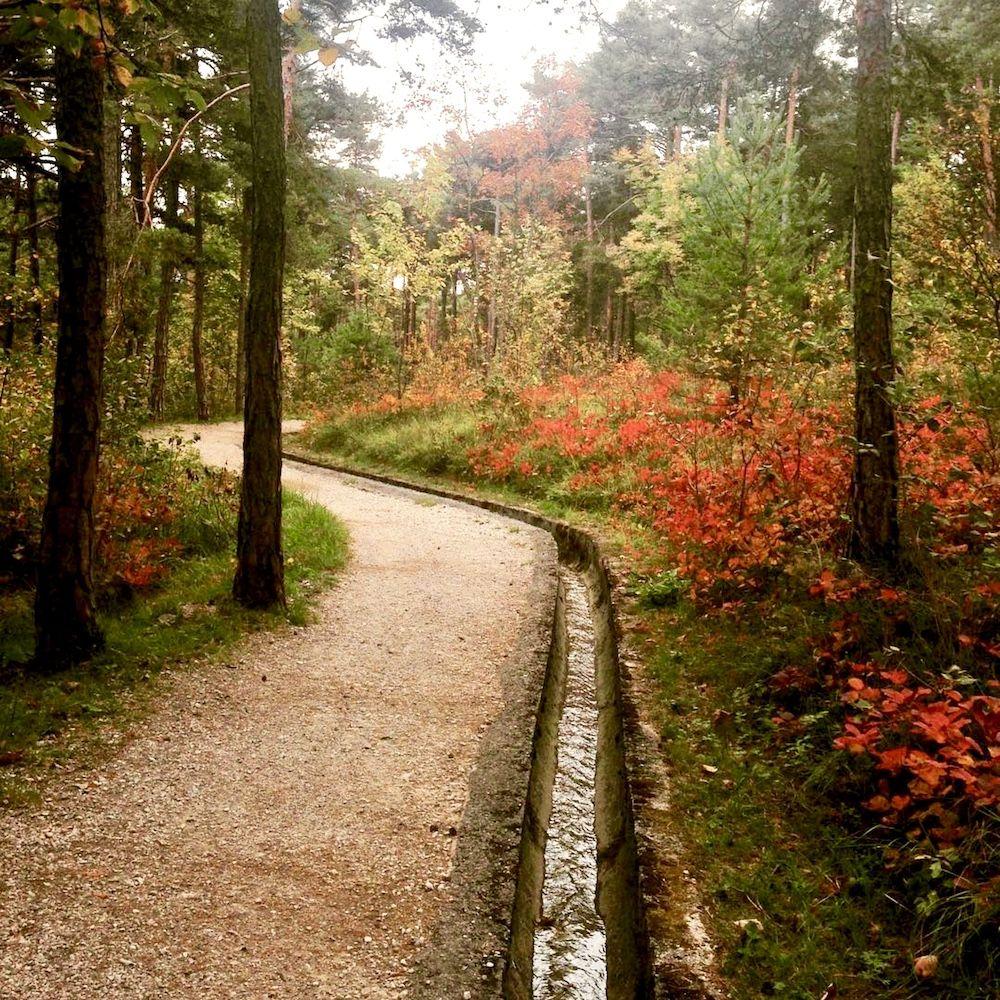passeggiate d autunno in val di non-sentiero margherita
