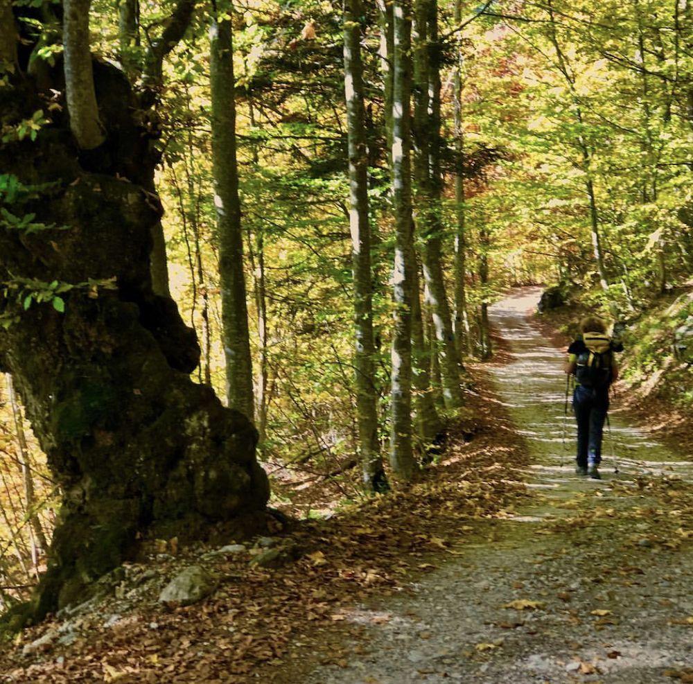 escursioni in Val di Non in autunno