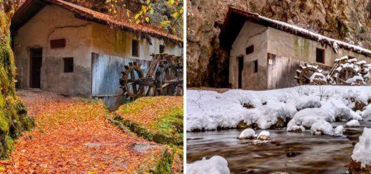 confronto-autunno inverno copertina-mulino-di-fondo