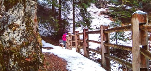 dria al fos in inverno-da cavareno a ruffré