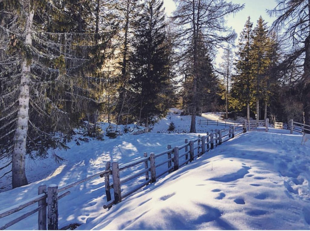 lago di Tret in inverno