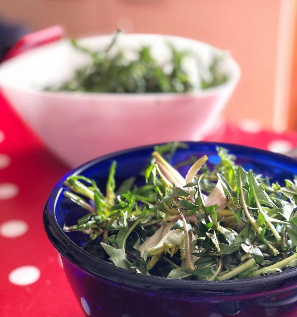 tarassaco in insalata
