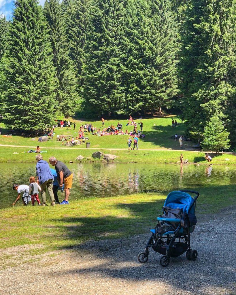 estate al lago dei caprioli-pellizzano