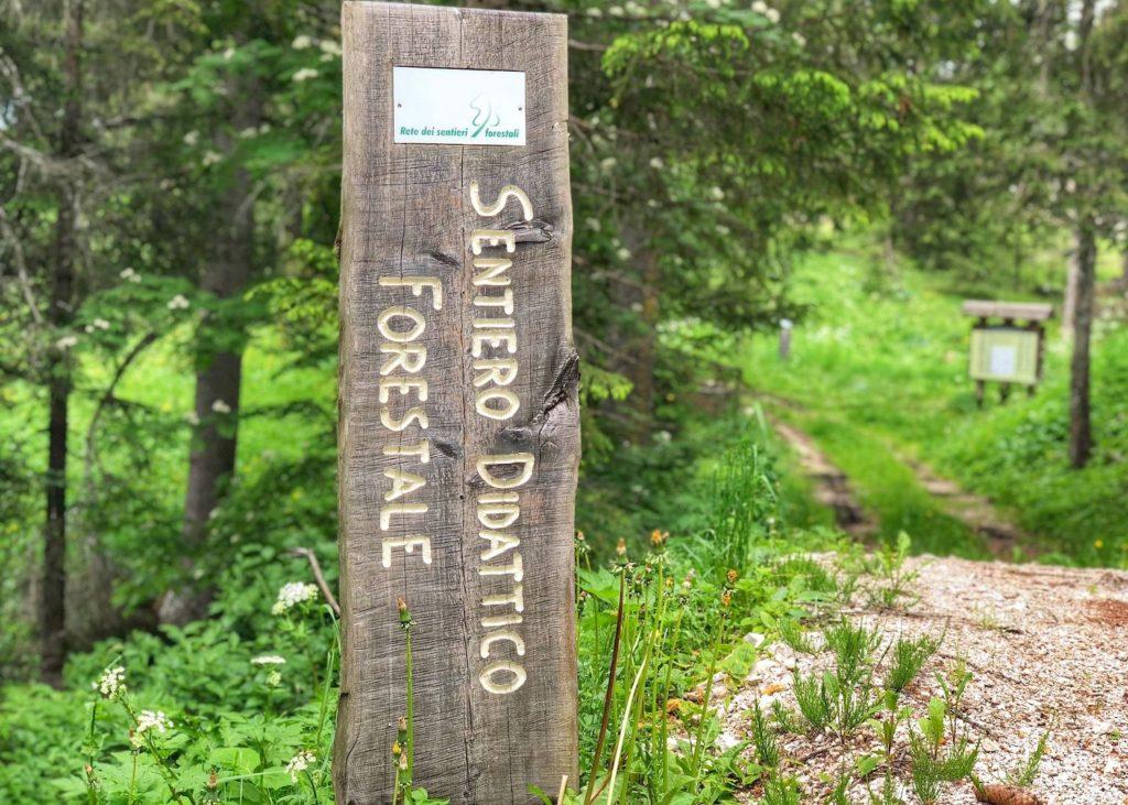 sentiero didattico forestale fondo regole di malosco