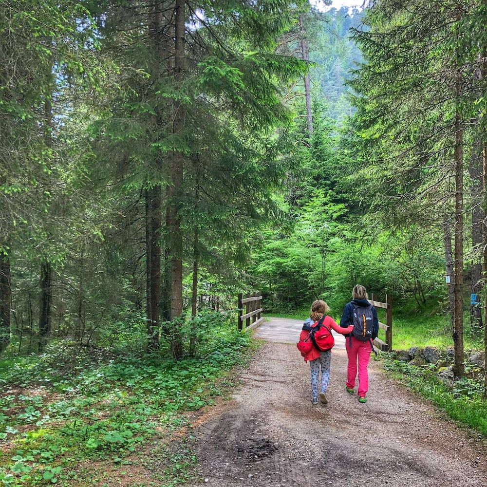 sentiero del bosco certificato-partenza fondo