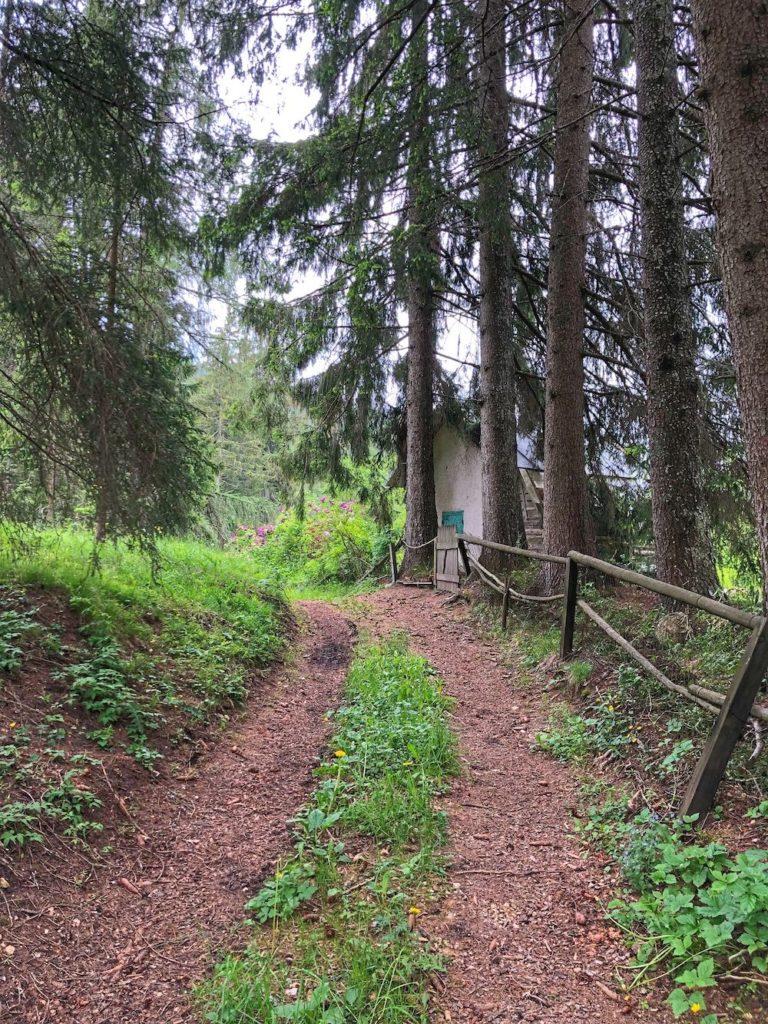 passeggiata del bosco certificato