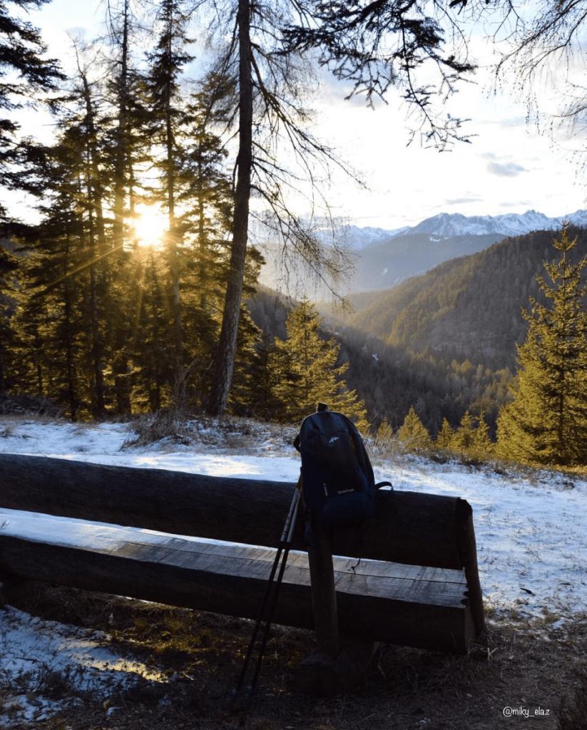 sentiero del bosco certificato inverno