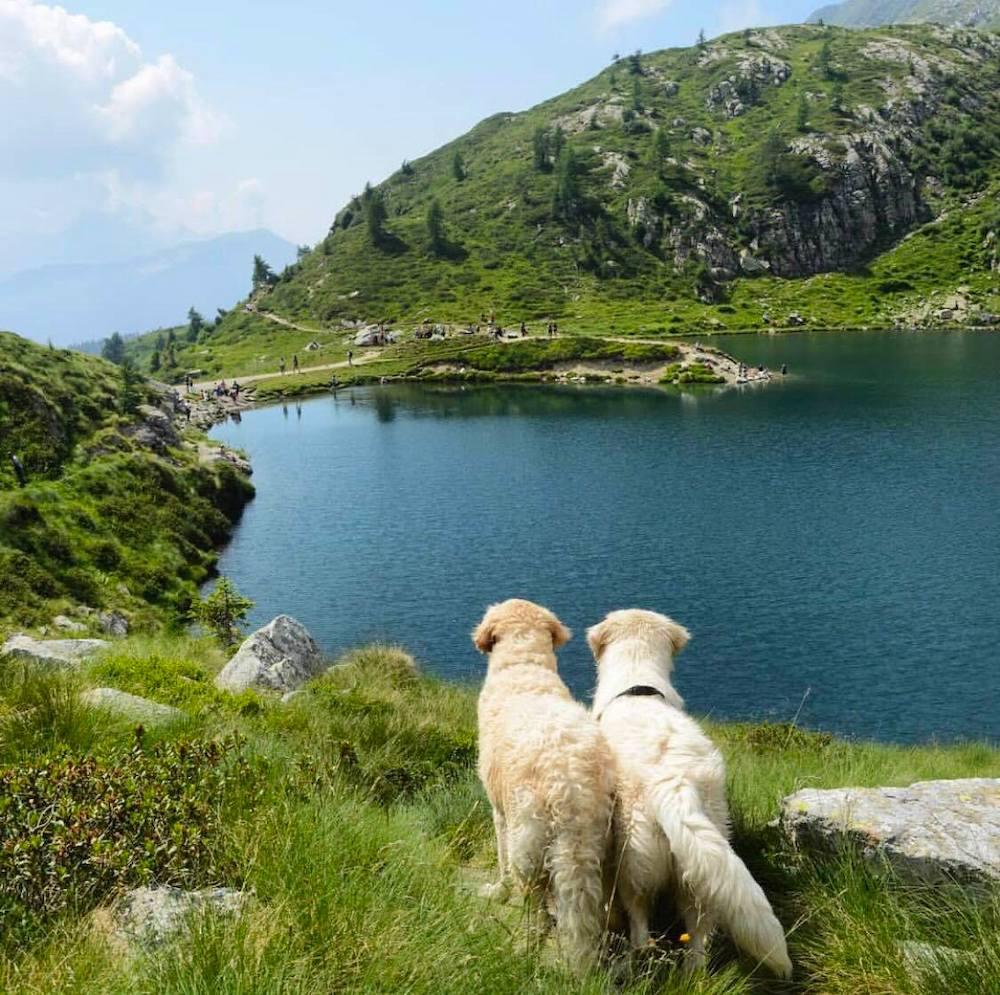 lago ritorto-laghi sopra madonna di campiglio