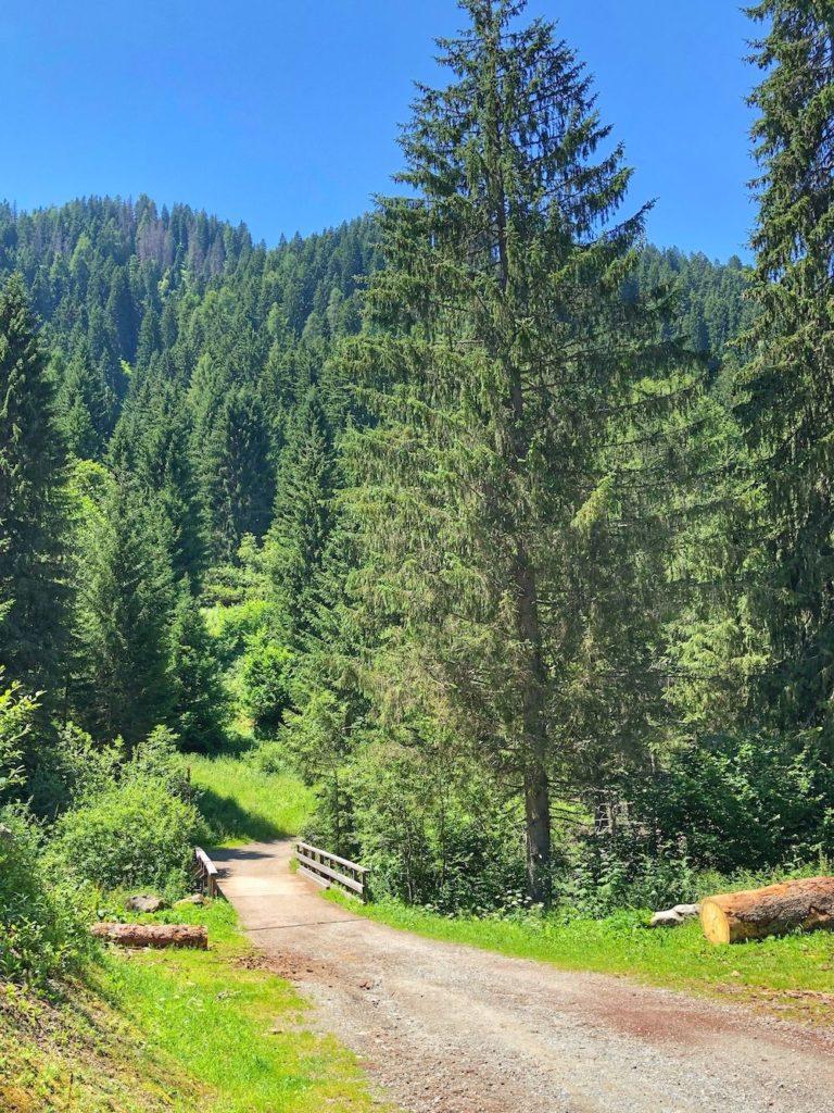 sentiero dal lago dei caprioli alla valpiana