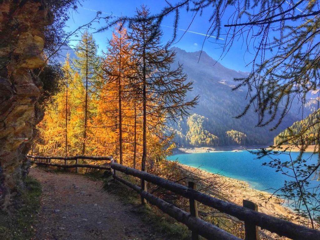 laghi in trentino in autunno-lago di pian palu