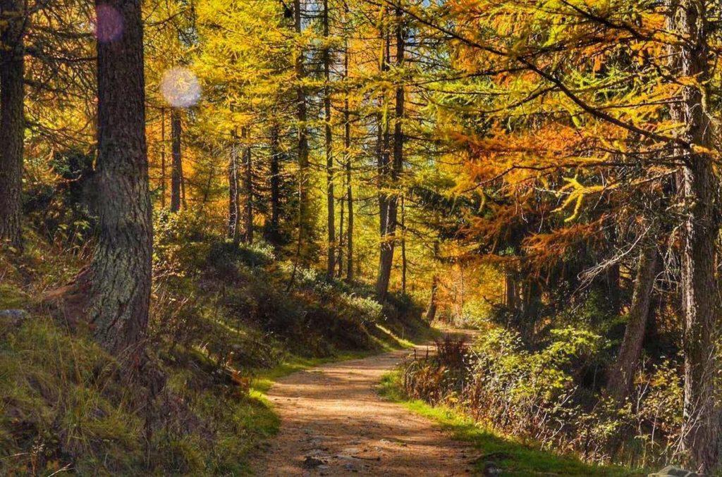 passeggiate in autunno in val di sole