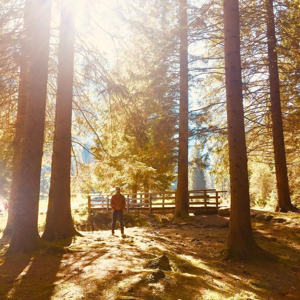 valpiana in autunno-val di sole