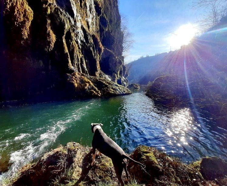 fiume noce val di non
