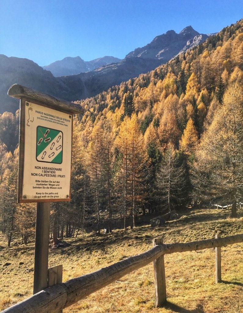parco dello stelvio-non calpestare i prati di montagna
