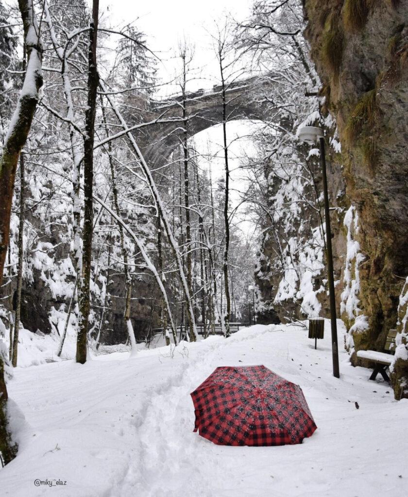 passeggiata del burrone di fondo in inverno