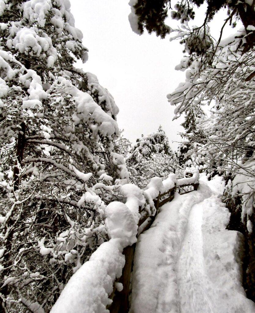 dria al fos inverno-cavareno