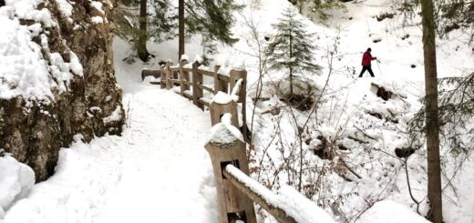dria al fos caavareno inverno