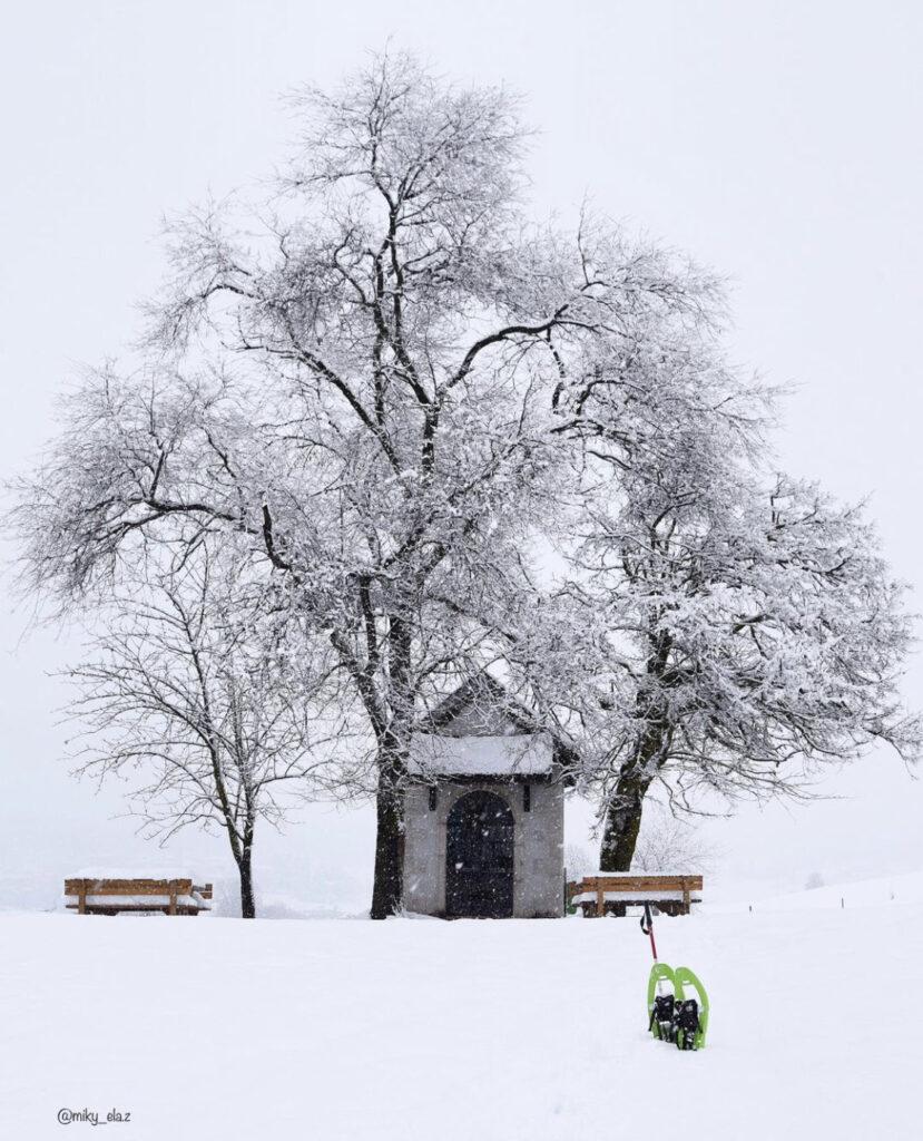 pradiei passeggiate facili con la neve