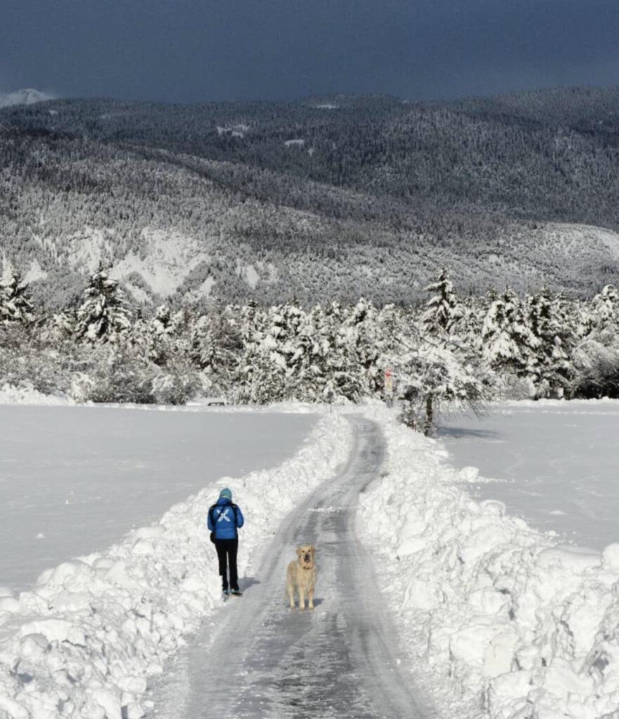 passeggiate in val di non per godersi la neve-pradiei