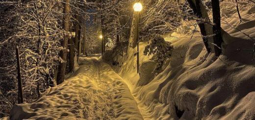 viale dei sogni inverno