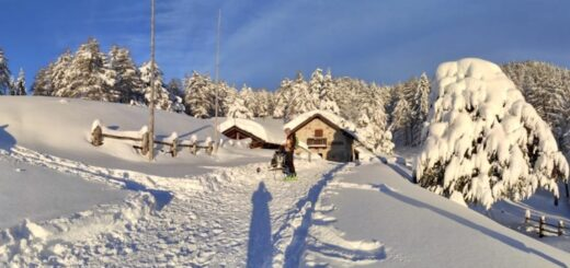 malga rodeza predaia inverno